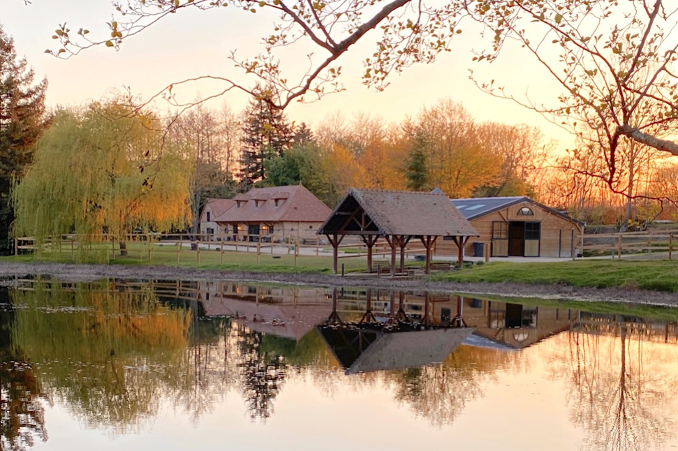 464 – Propriété équestre avec étang